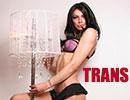 Trans latina