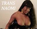 Trans Tours